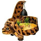 VIVIDARIUM preisgekröntes Schildkrötenhaus. Die schönste Landschildkröte Tabelle / Vivarium / Haus. schildkröten