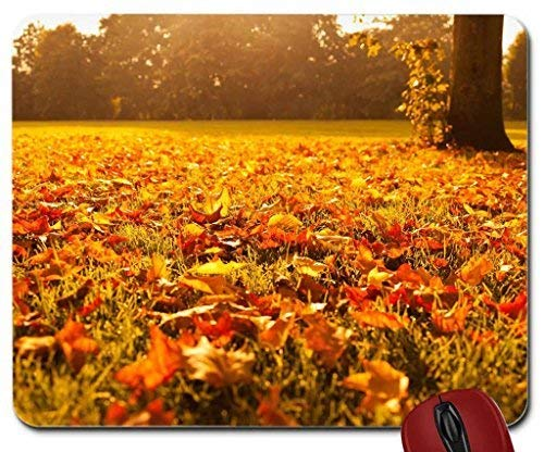 Mesllings Autumn Leaves at Adirondack State Park, New York Mauspad Computer Mousepad 9.25 x 7.75
