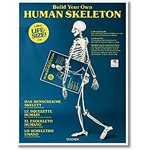 El esqueleto humano (Varia)