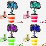 Adolenb Jardin- 100pcs graines de pots de plantes de cactus rares, graines de cactus fan multicolores, raretés adorables pots à fleurs