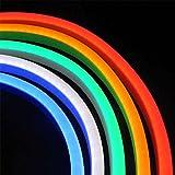 Led NEON Flex, DC24V, SMD5050-72Led-m, RGB, 1 metro, RGB