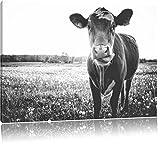 Einzelne Kuh auf Butterblumenwiese in der Abendsonne Kunst B&W, Format: 80x60 auf Leinwand, XXL riesige Bilder fertig gerahmt mit Keilrahmen, Kunstdruck auf Wandbild mit Rahmen, günstiger als Gemälde oder Ölbild, kein Poster oder Plakat
