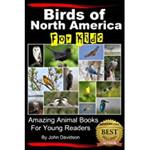 Birds of North America For Kids - Amazing Animal Books  for Young Readers (Amazing Animal Books for Young Readers Book 29) (English Edition)