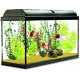 Interpet Aquaverse Glass Aquarium Fish Tank - 65 Litre