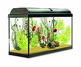 Interpet aquaverse Schrank für Glas Aquarium Fisch Tank