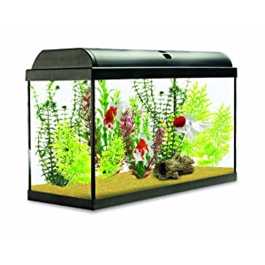 Interpet Aquaverse Glass Aquarium Fish Tank – 160 L