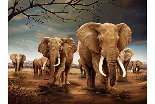 3D Lenticular Póster (40,64 cm x 30,48 cm) de elefantes 40 x...