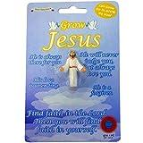 crescere il propio jesus