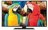 Thomson 55FZ4633 140 cm (55 Zoll) Fernseher (Full HD, Twin Tuner, 3D, Smart TV)