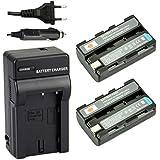 DSTE 2-pack Rechange Batterie et DC05E Voyage Chargeur pour Sony NP-FS10 DCR-PC1 DCR-PC2 DCR-PC3 DCR-PC4 DCR-PC5 DCR-TRV1VE DSC- F505 DSC-F55 DSC-P1 DSC-P20 DSC-P30 DSC-P50