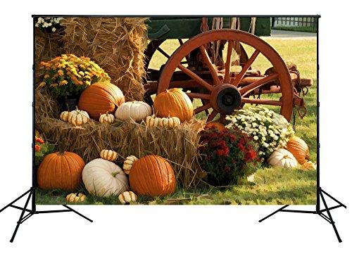 NIVIUS PHOTO 150*220cm Halloween Hintergrundbild Kürbis Hintergrundbild für die Studie Neugeborenen Porträt Partei Feier XT-4195