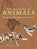 Image de Art Anatomy of Animals