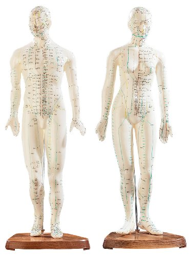 newgen medicals Akupunktur Modell: Akupunktur-Figuren 2er-Set (Mann/Frau) (Akupunktur Puppe)