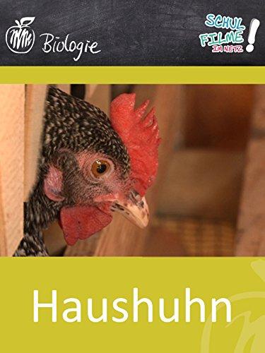 Haushuhn - Schulfilm Biologie (Biologie Der Nutztiere)