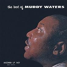 The Best of Muddy Waters [Vinyl LP]
