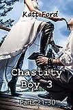Chastity Boy 3: Parts 21 - 30 (English Edition)