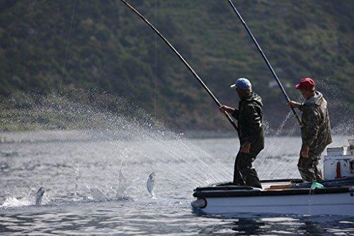 Thunfischfilet mit Oregano 120 g, Portugal, Santa Catarina - 6
