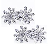 Santfe Sparkling Rhinestones Crystal Shoes Decoration Fashion Wedding Party Shoe Clips with Various Design