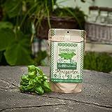 """Minigarten - Basilikum """"Genoveser Emily"""" - Komplettes Pflanzset für dieses vielseitig Würzkraut"""