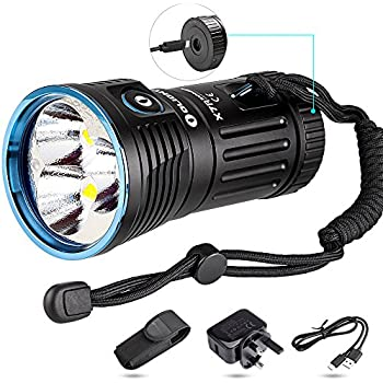 Skyrim Special Edition Torch Light Bug