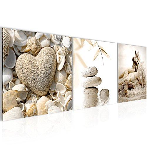Bilder Feng Shui Muscheln Wandbild Vlies - Leinwand Bild XXL Format Wandbilder Wohnzimmer Wohnung Deko Kunstdrucke 90 x 30 cm Braun 3 Teilig - MADE IN GERMANY - Fertig zum Aufhängen 501634a