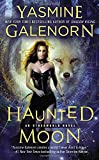 Haunted Moon : An Otherworld Novel