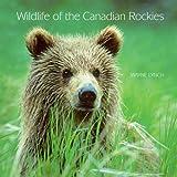 Wildlife of the Canadian Rockies