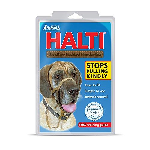 halti-licol-educatif-anti-traction-dressage-pour-chien-taille-5-noir-rembourre