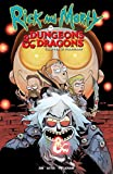 Rick and Morty Vs. Dungeons & Dragons 2: Painscape