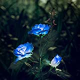 XLUX Beleuchtung Außen Solarleuchte Garten, Solar Garten Lampen mit LED Rose Lichter, Dekoration Lichter für den Garten Rasen Terrasse Feld Weg, Blau