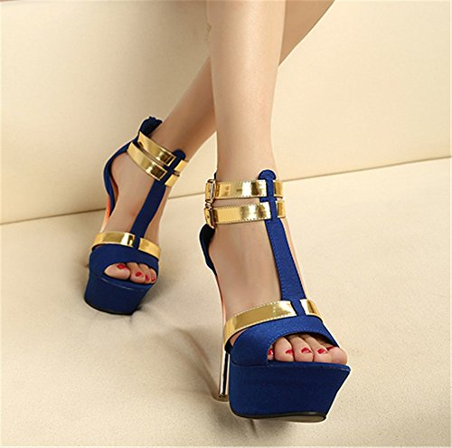Wealsex Damen Peep Toe High Heels Plateau Sandaletten Damenschuhe fashion Stiletto Sandalen Blau