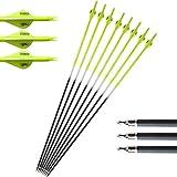 ZSHJG 12pcs Carbonpfeile für Bogenschießen 30 Zoll Jagdpfeile Spine 500 Bogenpfeile mit Austauschbare Broadhead für Compound und Recurve Bogen Pfeile für Bogensport (Gelb)