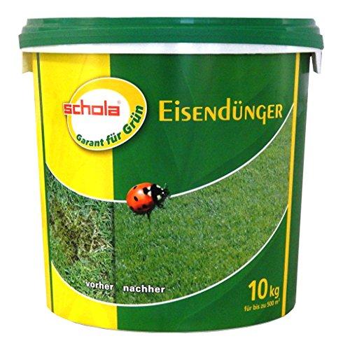 SCHOLA Eisendünger Rasendünger Gehölze Rasen Rhododendren 10 kg