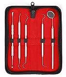 5er Dental Set Zahnreinigung Sonde Zahnpflege Edelstahl Instrument Zahnkratzer hochwertige Profiqualität von lebenslange Garantie (5pcs zahnmedizinisches Set)