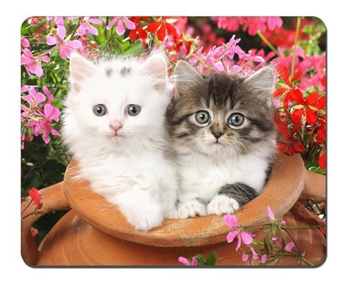 Preisvergleich Produktbild Katzen und Blumen Mauspad, Gaming Maus Pad (25,9x 20,8cm)