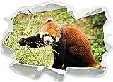 Carino Panda rosso, carta 3D della parete di formato: 92x67 cm decorazione della parete 3D Wall Stickers parete decalcomanie