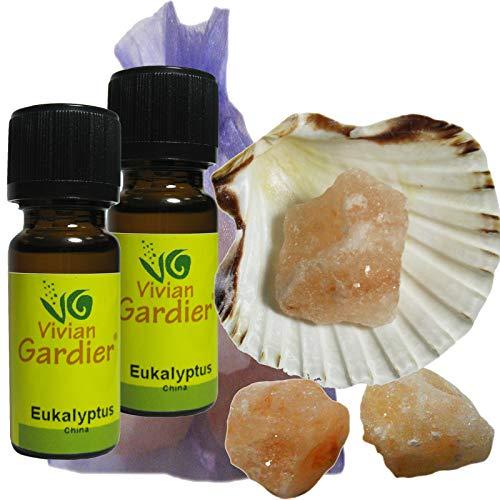 Eukalyptus Cineol Öl ätherisch + NATURREIN 2 x 10ml von VIVIAN GARDIER, kontrollierter Anbau #50016 | 7-teilig. Aromatherapie Duft-Set mit Muschel, 3x Sole-Kristalle zum Beduften, Duftsäckchen -