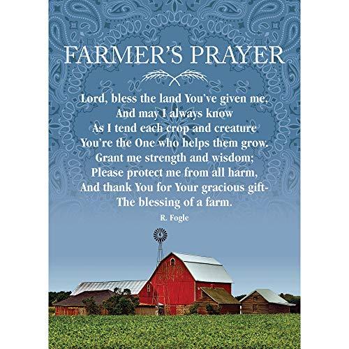 Outdoor Banner Display (Dicksons Farmers Gebet Multi 13 x 18 kleine rechteckige Gartenflagge)