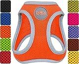 DDOXX Hundegeschirr reflektierend Air Mesh | Step-In | für große, mittelgroße, mittlere & kleine Hunde | Geschirr Hund | Katze | Brustgeschirr | Softgeschirr | Zubehör | Orange, Größe C (M)