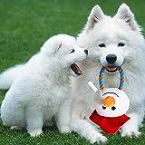 Coseyil Hundespielzeug, Weihnachts-Schneemann, Haustier-Spielzeug Schnarchen Hund Training Zahn-Spielzeug Werfen interaktives Spielzeug