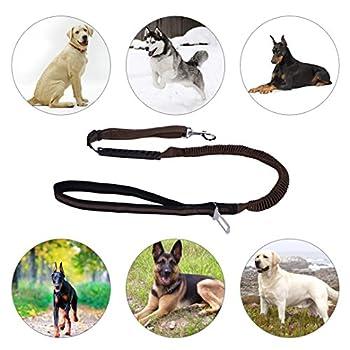 Ckeyin Reflektierende Haustier-leine, Hohe Elastische Hundeleine Haustier-autositz-sicherheitsgurt-einziehbare Tracti Auf Sicherheitsseil 0