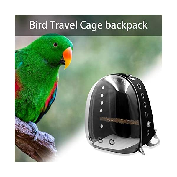 soundwinds Bird Carrier Parrot Travel Backpack Transparent Space Capsule Carrying Backpack Travel Bag Breathable Bird Transport Bag with Anti-lost Hook and Non-slip Pad