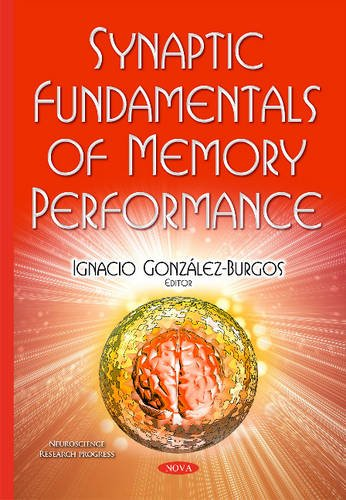 Synaptic Fundamentals of Memory Performance (Neuroscience Research Progress)