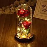 LEDMOMO Rote Seide Rose und LED-Licht mit gefallenen Blütenblättern in einer Glaskuppel auf einer hölzernen Basis Geschenk zum Valentinstag Jubiläum Geburtstag Hochzeit (zwei Rose)
