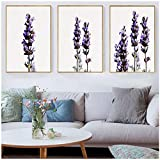 ZYHFBHFBH Aquarelle Mur Art Lavande Fleur Toile Peinture Botanique Posters et Prints Images pour Salon Cuisine-50x70cm sans Cadre