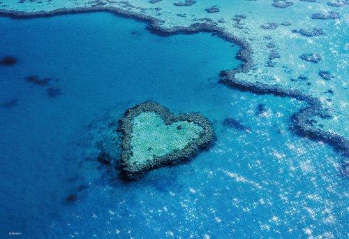 300 Piece Heart Reef Island 73-192 (japan import) Heart Reef