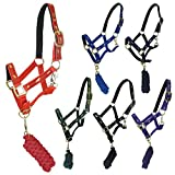 Equestrian Horse Riding Jumping Schooling Padded Bridle Headcollars And Halters And Colours