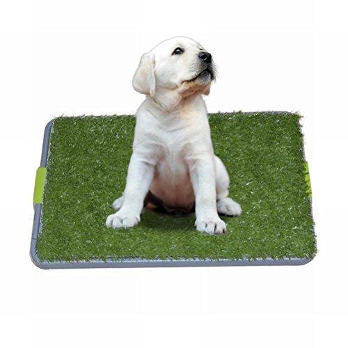 petgarden Indoor Pet Töpfchen Pad-3Schichten Hund WC-Training Matte mit antimikrobiellen geruchsresistent Technologie, 43,2x 68,6cm