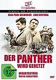 Der Panther Wird Gehetzt kostenlos online stream