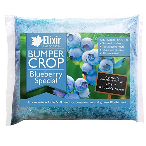 Elixir Gardens® Bumper Crop | Blueberry Special Fertiliser - NPK 12-10-11 + 4 (1kg Polythene Bag)